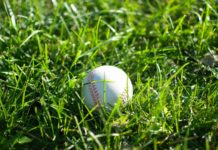 Softball-Facts-on-Successtuff