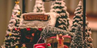Tips-to-Recycle-&-Reuse-Your-Christmas-Trees-on-successtuff