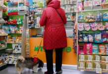 Tips-For-Selecting-A-Good-Online-Pet-Store-on-SuccesStuff