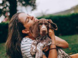 Keep-Pets-Safe-&-Secure-at-Home-on-SuccesStuff